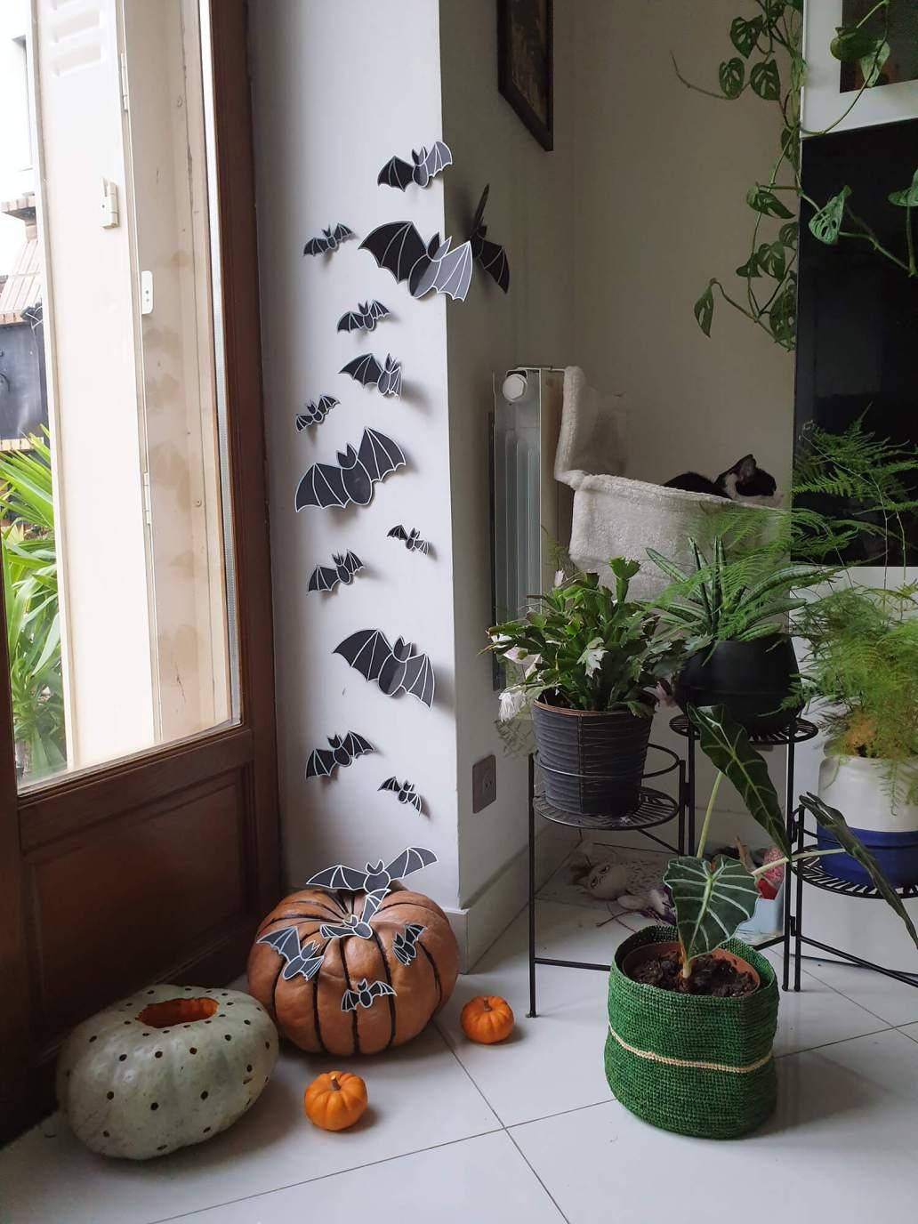 20201012 175012 - Comment décorer la citrouille d'Halloween avec originalité