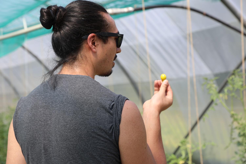 Channe qui goute une tomate - Potage et Nature : une ode à la permaculture au coeur de la Bretagne