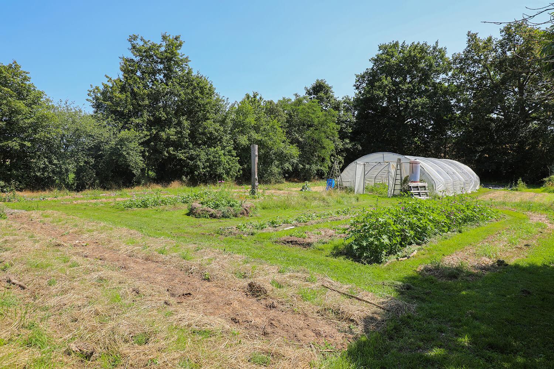 Les champs de culture de potage et nature - Potage et Nature : une ode à la permaculture au coeur de la Bretagne