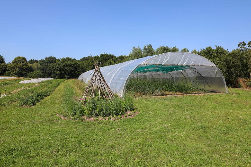 Les potagers de Potage et Nature - Potage et Nature : une ode à la permaculture au coeur de la Bretagne