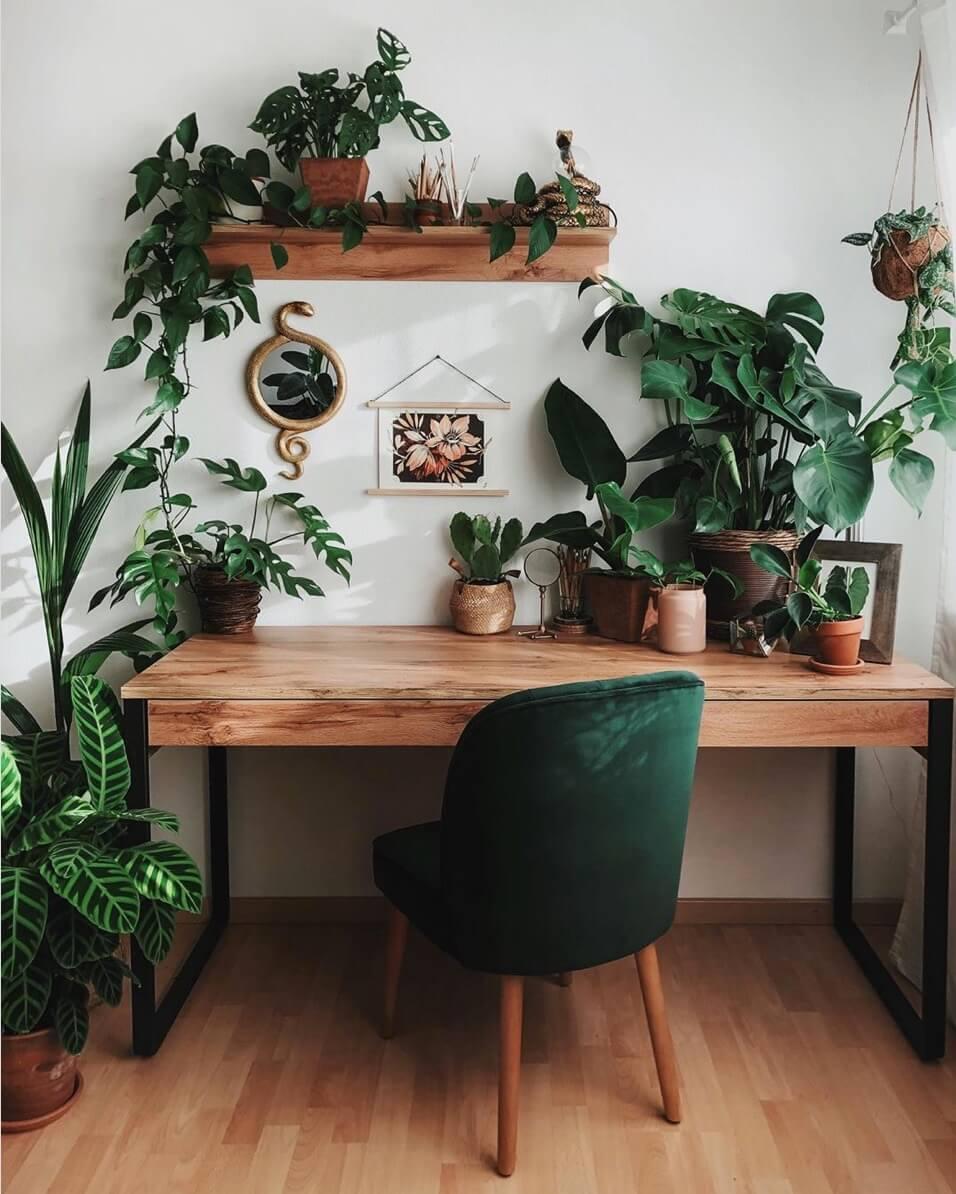 bureau en bois avec chaise velours vert et plusieurs plantes - Comment aménager un coin bureau efficace à la maison?