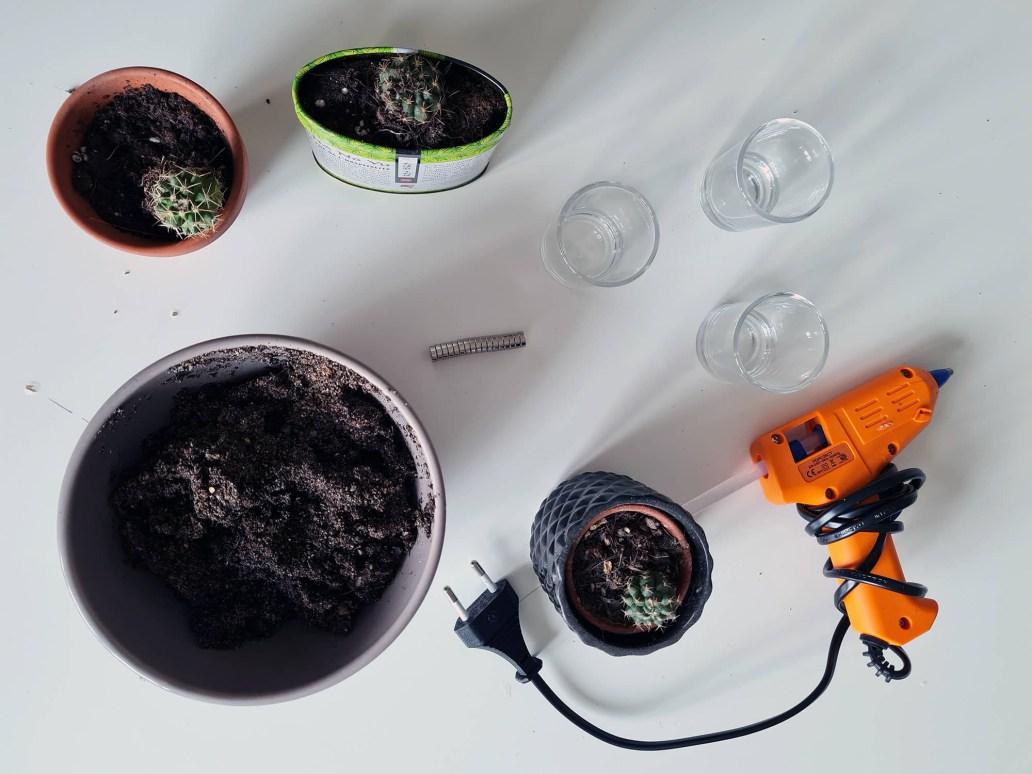 20210123 132306 - DIY cuisine : fabriquer des magnets cactus pour le frigo