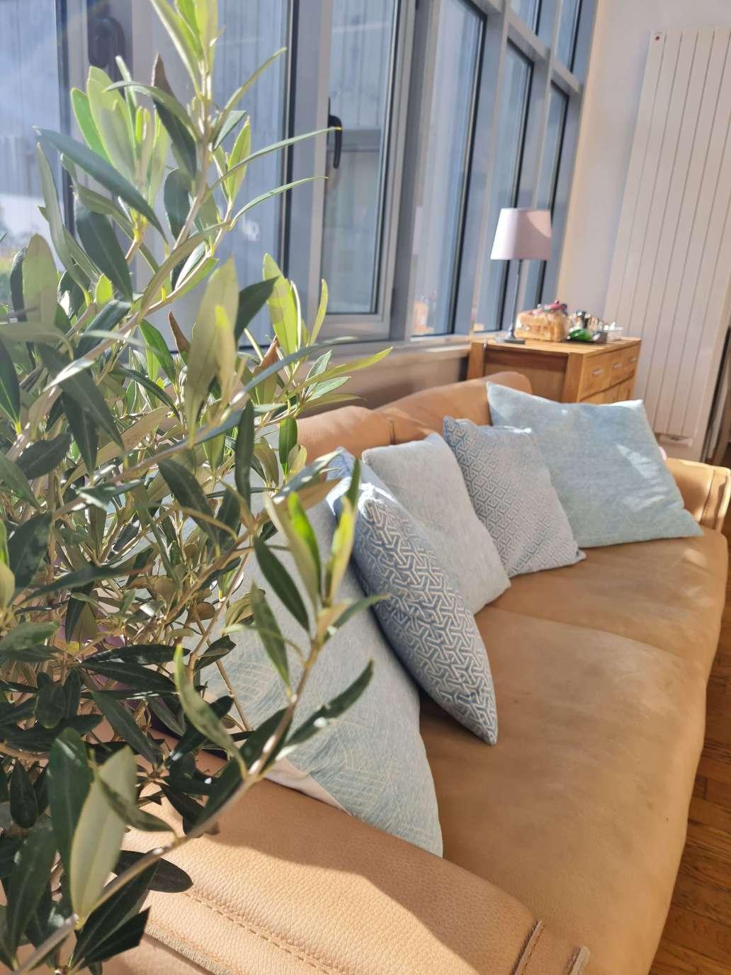 20210213 142722 1536x2048 - Airbnb Tour : visite privée d'une tiny house à Bayeux