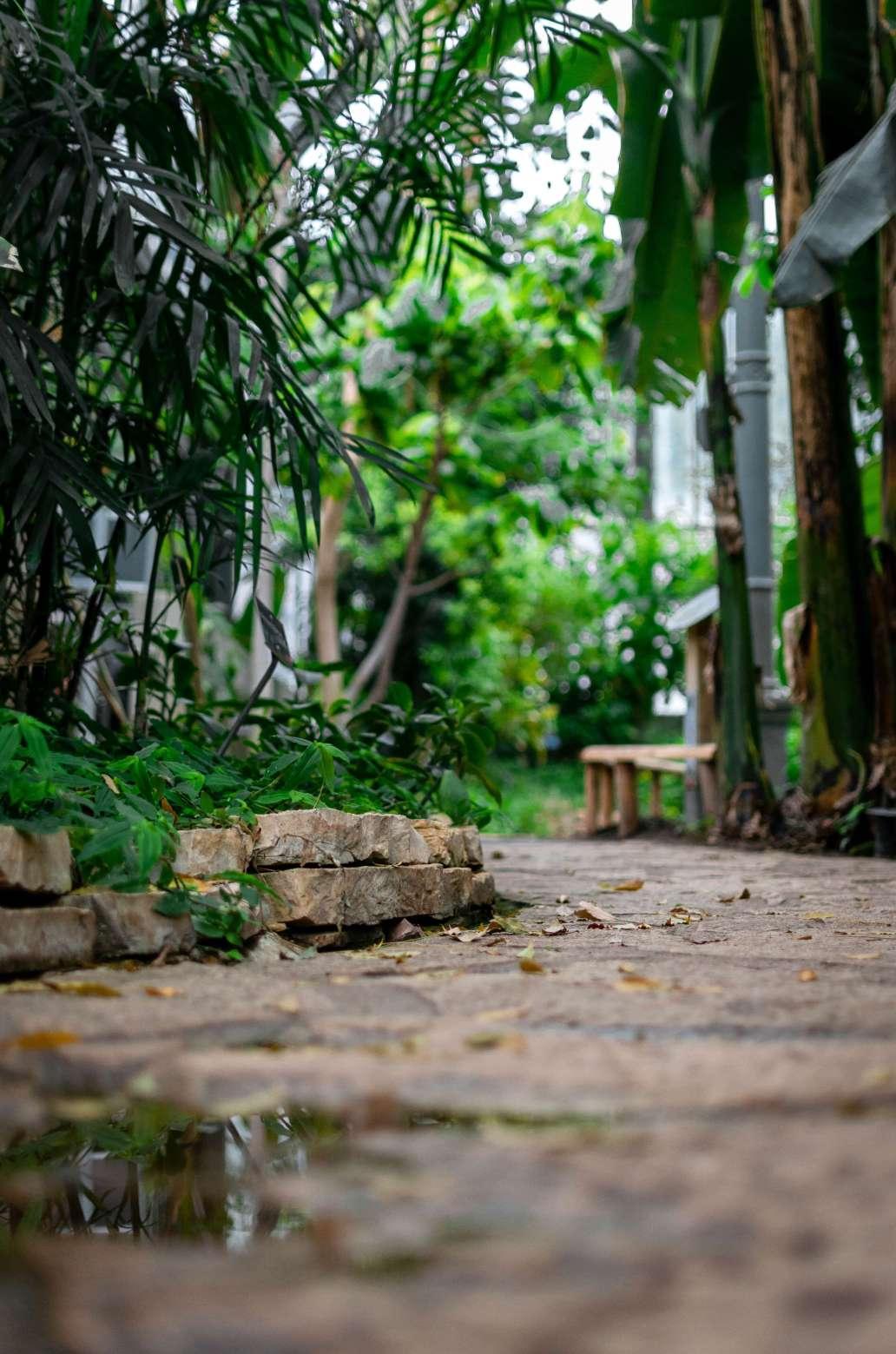 kilyan sockalingum FXmn2BZn2A4 unsplash 2 1356x2048 - Quelques astuces pour bien aménager son jardin