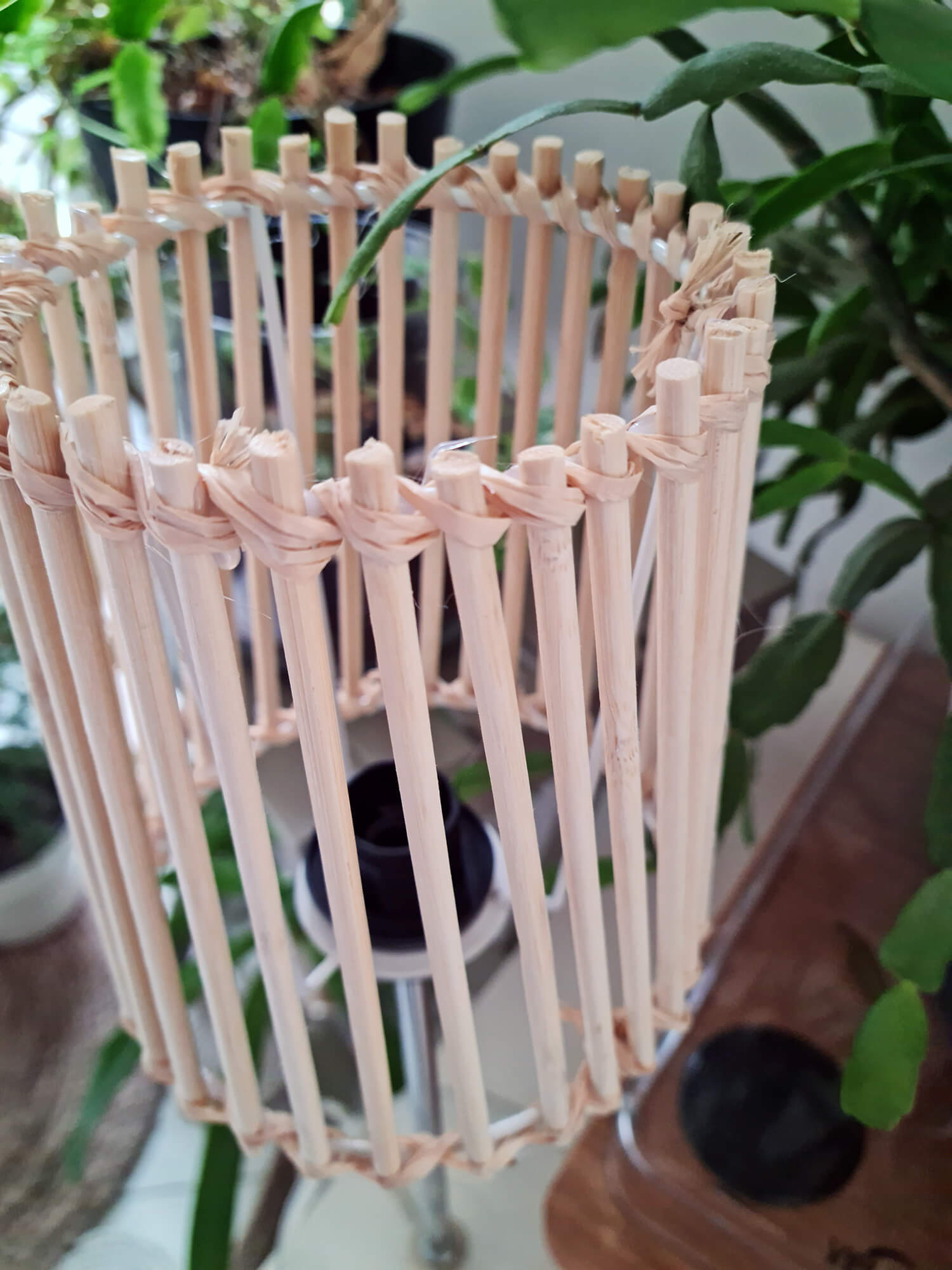 20210409 150935 - Fabriquer une lampe nature en bois pour diffuser une lumière douce