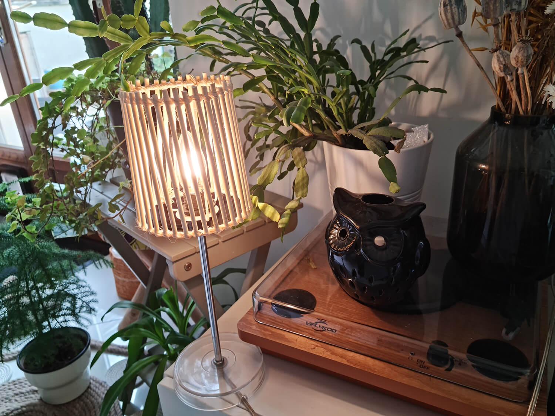 20210409 151106 - Fabriquer une lampe nature en bois pour diffuser une lumière douce