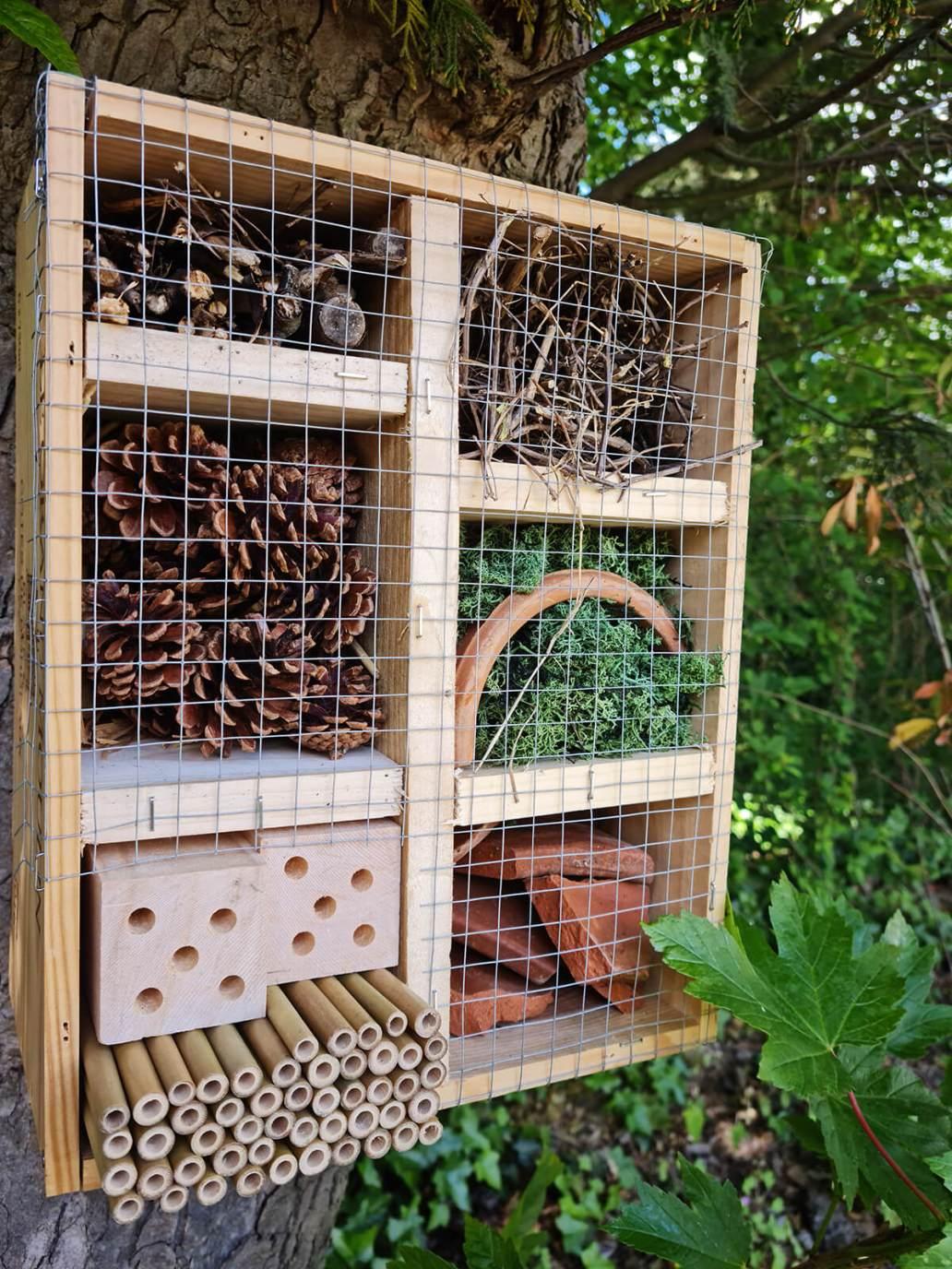 20210521 124854 - DIY jardin : construire un hôtel à insectes avec une caisse à vin