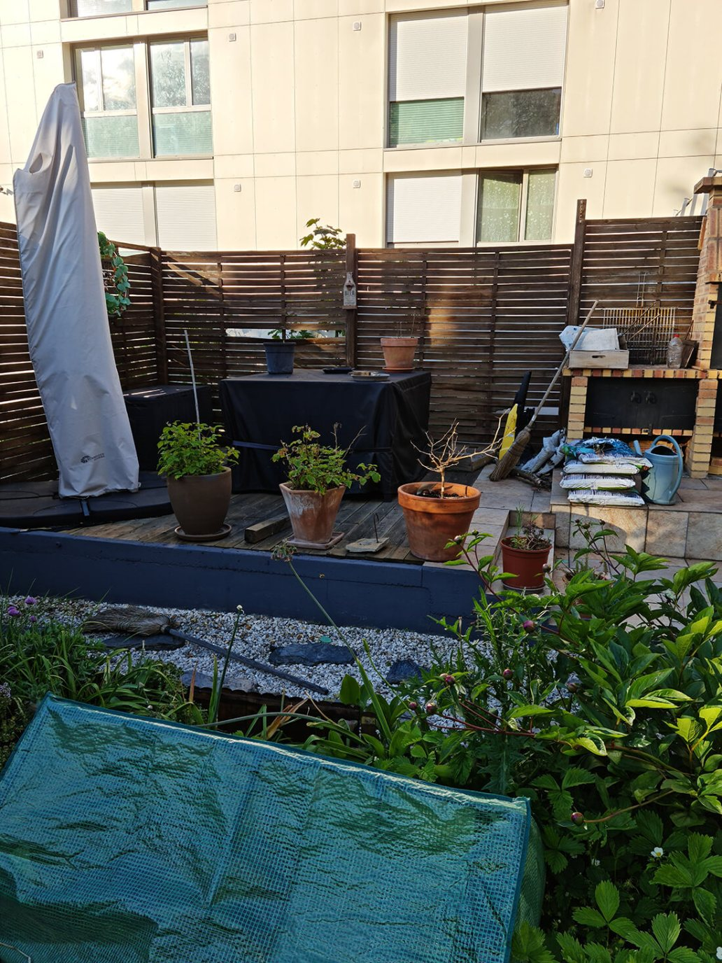 20210527 194042 - Peindre un mur en béton, la suite du relooking jardin