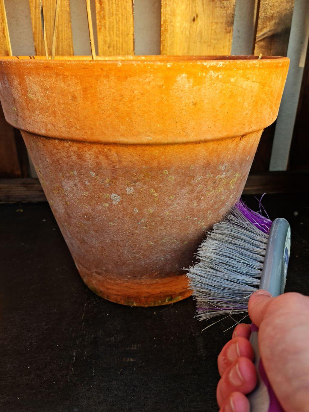 20210610 210805 - DIY jardin : ajouter de la douceur sur un pot de fleurs avec une corde