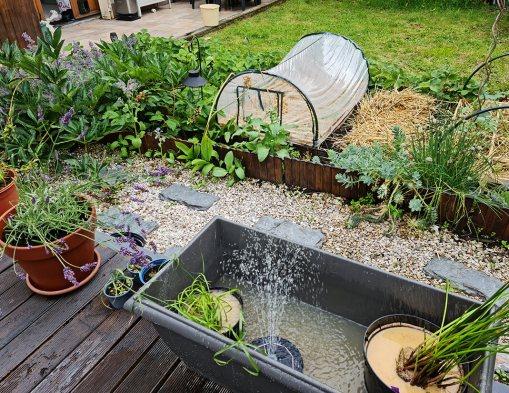 Créer un bassin apaisant avec une fontaine dans le jardin