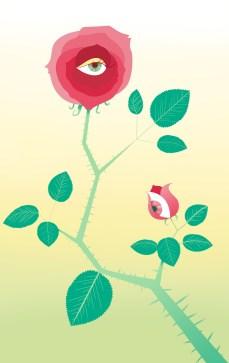 Rosa, pittura digitale