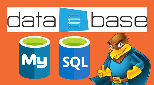 Tạo mới Database trên HawkHost bằng MySQL® Database Wizard