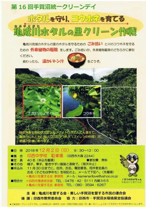 亀成川ホタルの里クリーン作戦のチラシ。
