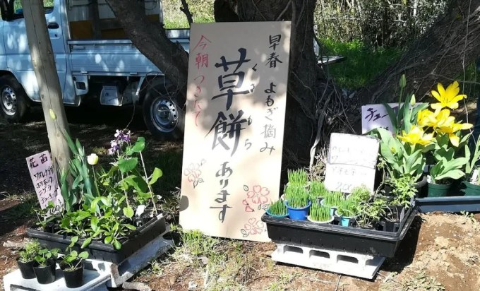 2019/04/13 吉高大桜までの道中03。