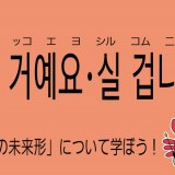韓国語の敬語の未来形 실 거예요・실 겁니다