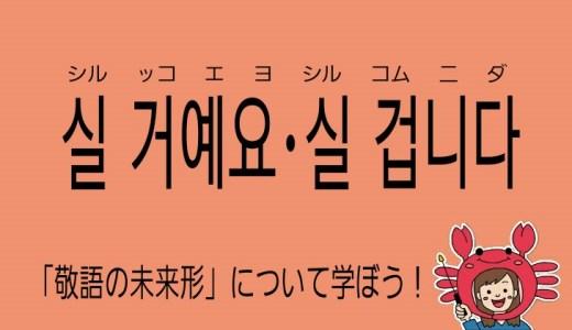 韓国語の敬語~未来形~【실 거예요・실 겁니다】を勉強しよう!