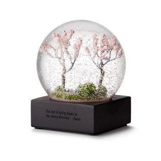 http://www.uncommongoods.com/product/cherry-blossom-snow-globe