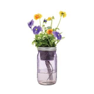 http://www.uncommongoods.com/product/mason-jar-indoor-flower-garden