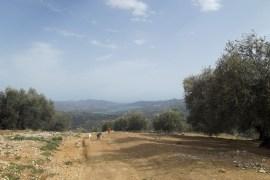 View to Lake Vinuela