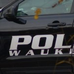 Driver Dead, Passenger Remains Hospitalized After Weekend Crash That Took Down Power Lines In Waukegan 💥🚑🚓🚑🚓🚑🚓💥