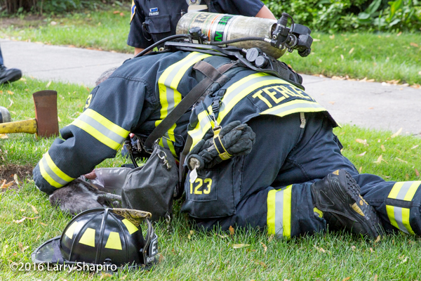 firefighter revives cat after fire