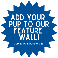 ADD YOUR PUP TO OUR FEATURE WALL! (1)