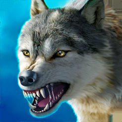 3 狼来了!伊州住戶必需小心防範! (1)