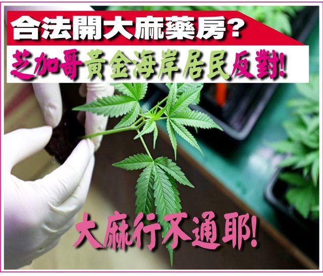 082220-13---芝加哥黃金海岸開大麻藥房遭到居民反對!-1
