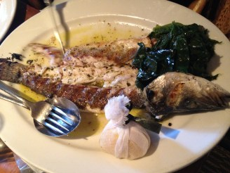 Mediterranean Sea Bass at Kokkari