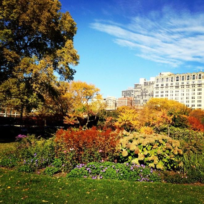 Autumn, Lincoln Park, Chicago