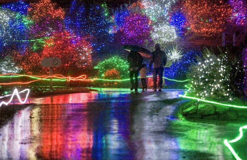 Zoolights in Chicago