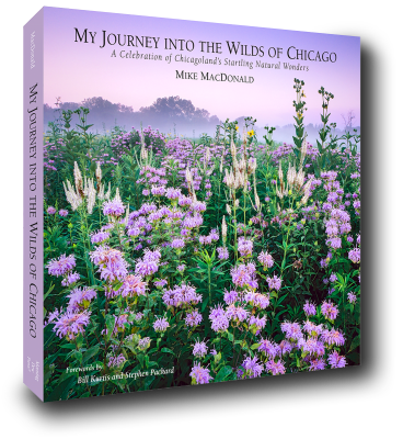 My Journey into the Wilds of Chicago: A Celebration of Chicagoland's Startling Natural Wonders by Mike MacDonald