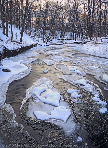 Shallow streams, like Waterfall Glen's Sawmill Creek, are the perfect winter venue for viewing Mother Nature's ever-changing handiwork.*