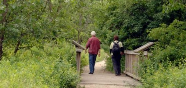 Where to hike in Chicago