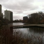 Free North Pond Nature Sanctuary Bird Walks