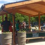 Free family workshop Skinner Park