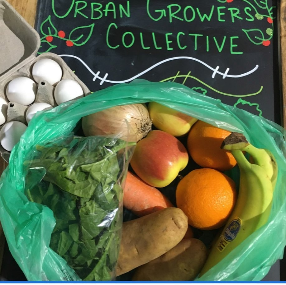 Eliminating barriers to urban farming and increasing purchasing from BIPOC growers and producers for institutions are among the priorities of the food equity council.