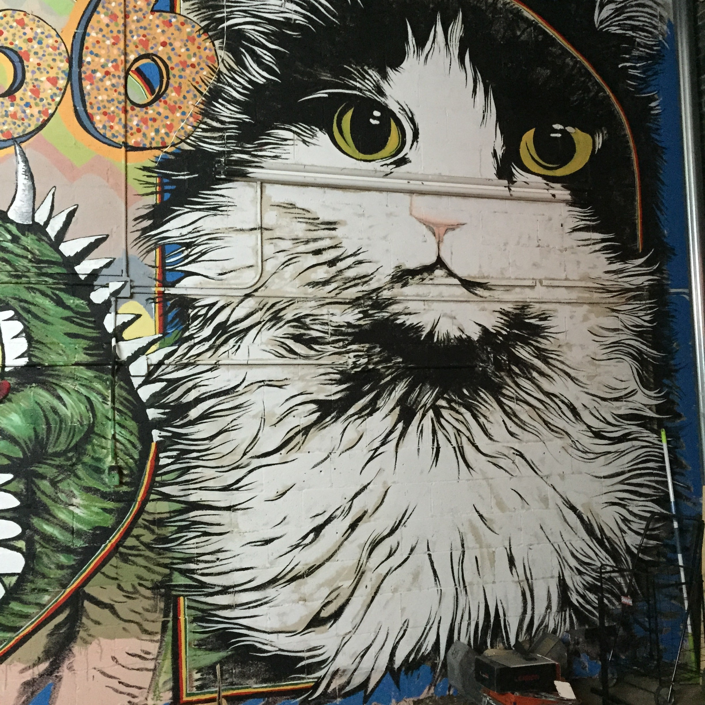 A mural of Precious, the Odd Obsession store cat