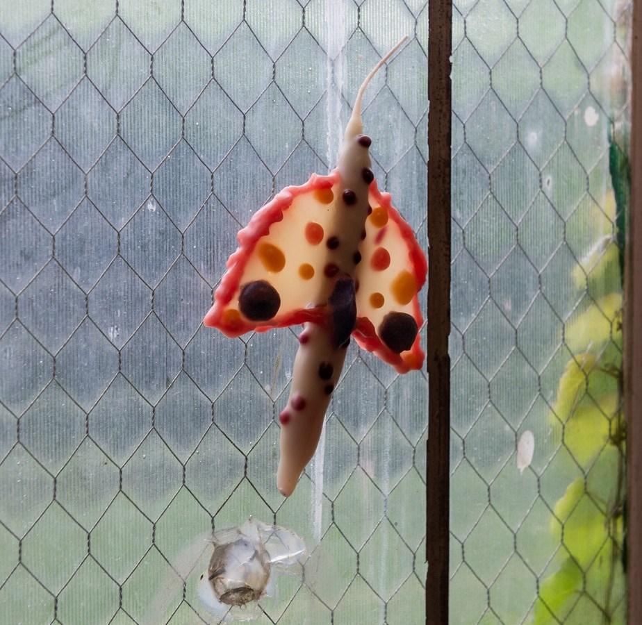 Hyun Jung Jun, dotted moth, 2021, beeswax and hemp wick.
