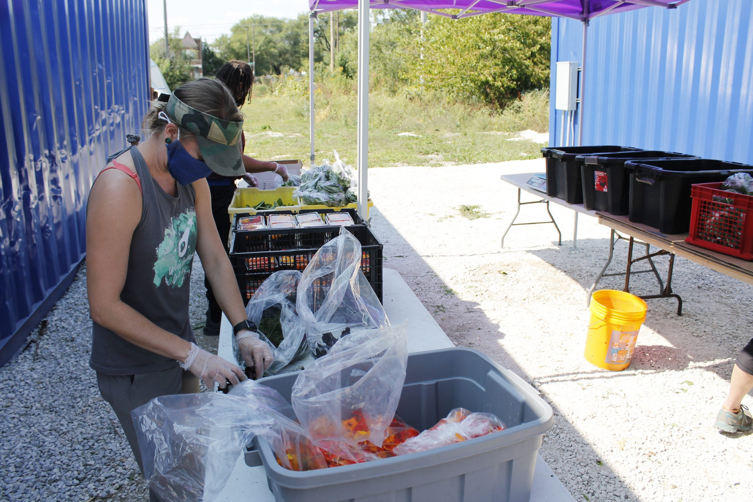 UGC program director Lauralyn Clawson helps pack edible flowers for collective-supported agriculture, or CSA, boxes that are sold to the community.