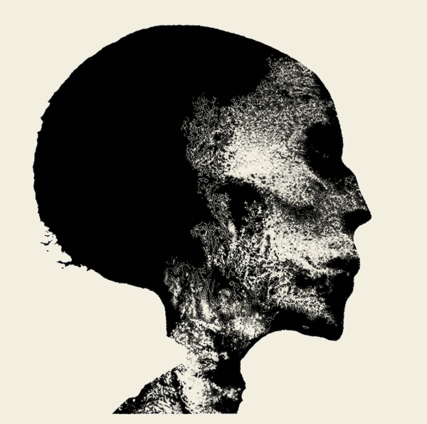 The cover of Chaos Echoes' <i>Transient</i>
