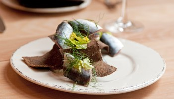The house-cured sardines are accompanied by crunchy shreds of pumpernickel bread and garnished with horseradish cream, dill, and celery leaf.