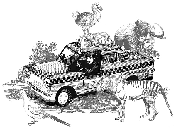 Could cabbies go the way of the dodo?