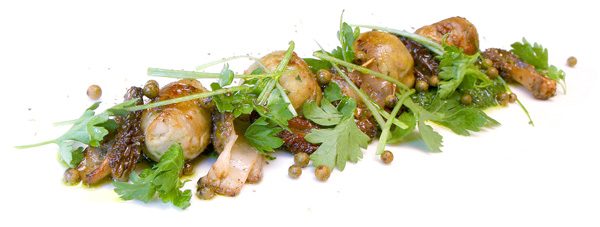 Rabbit polpettes with morels and green peppercorn salsa verde