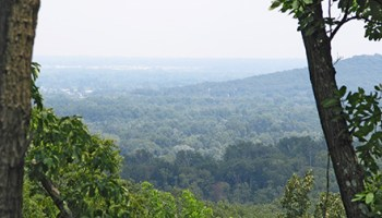 Jefferson Memorial Forest covers 6,000 acres—and boasts $15 campsites.