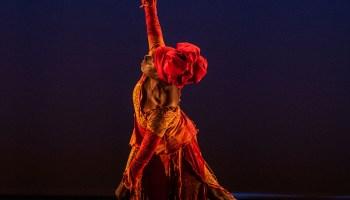 <i>In the Shadow of Nina Simone (Reverb)</i>