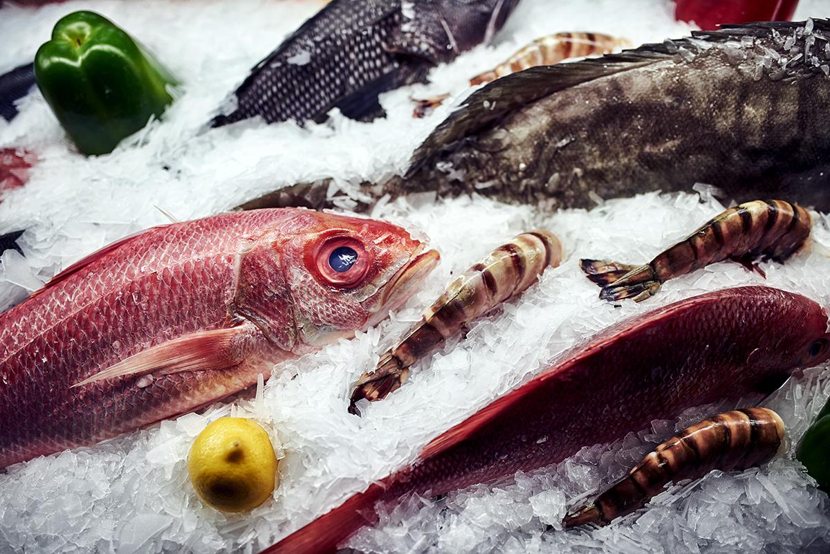 Black sea bass, South Africa shrimp, red snapper