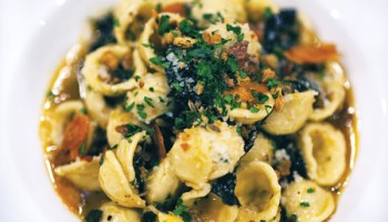 Handmade orecchiette with fennel sausage, kale, and slivers of toasted garlic