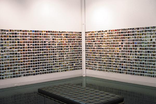 Suzanne Szucs, <i>Journal, in Progress</i>, 1994—2009, Polaroid film