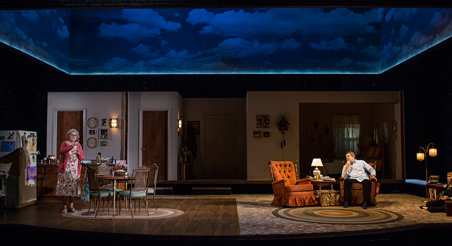 Steppenwolf's <i>Visiting Edna</i>, directed by Anna D. Shapiro